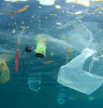 Dampak Polusi Plastik Di Asia Tenggara Di Mata Ilmuwan