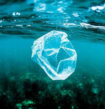Mau Mengatasi Polusi Sampah Plastik? Yuk, Dukung Bisnis Zerowaste