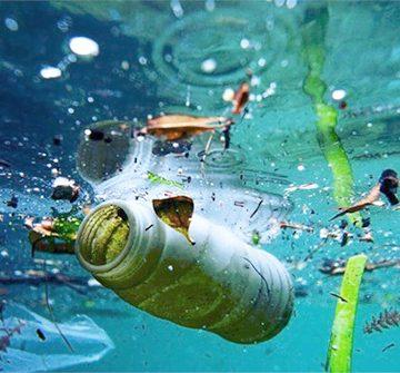 Mengurangi Plastik di Laut dan Menjaga Ekosistemnya
