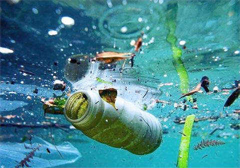 plastik di laut